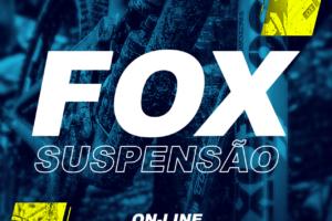 Módulo suspensão fox